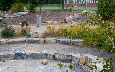 Riverside School storm water harvesting and food forest