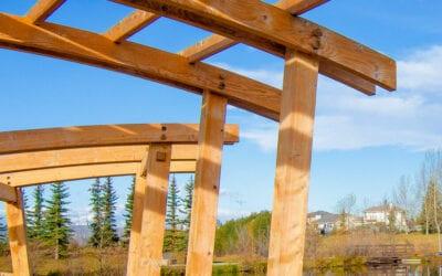 Mitford Timber Frame Pergola