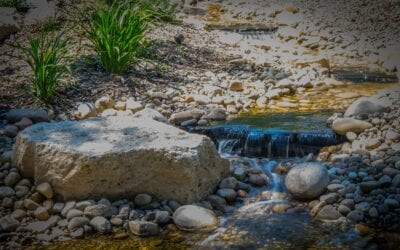 What is Water Resiliency and Why Is It Important?